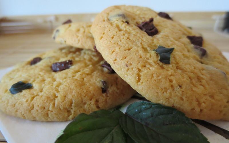 Biscuits au chocolat et à la menthe