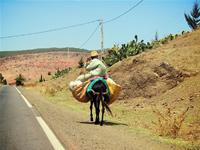 Maroc : de la tradition au modernisme