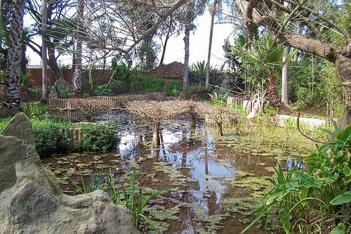 les Jardins exotiques de Bouknadel  Bouknadel4