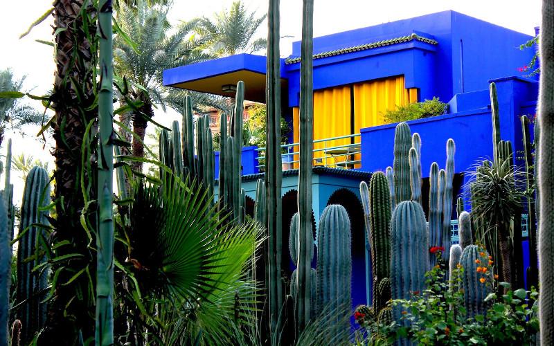 jardin majorelle tout propos de jardin majorelle. Black Bedroom Furniture Sets. Home Design Ideas